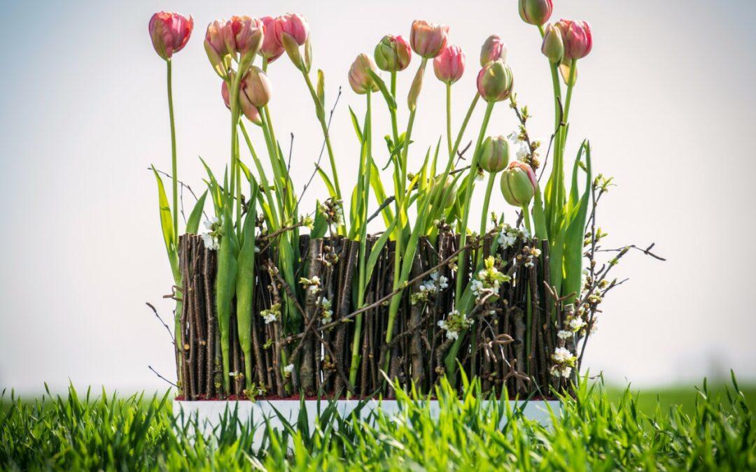 Tulpen info en inspiratie