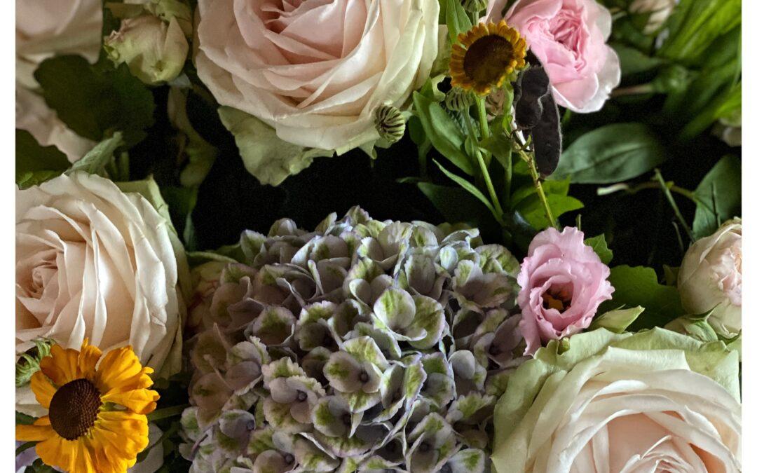 We willen allemaal DUURZAME bloemen en planten